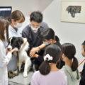 獣医さんと動物のお仕事子ども体験レポート|名古屋