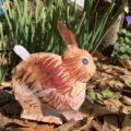 描く絵が変わる!オンライン「バイオミミクリ」で子どもの創造性を育む~ウサギ編~